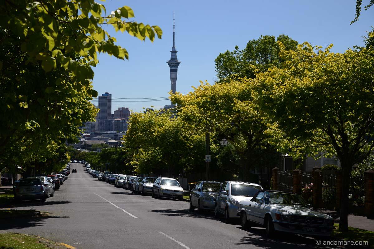 Auckland_Ponsonby-NZ_DSC_6853_00268_2013