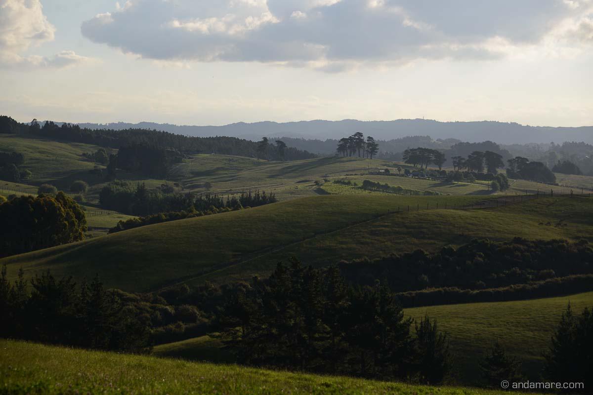 Matakana-NZ_DSC_7751_00862_2013
