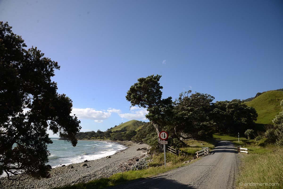 Coromandel Peninsula, Port Jackson