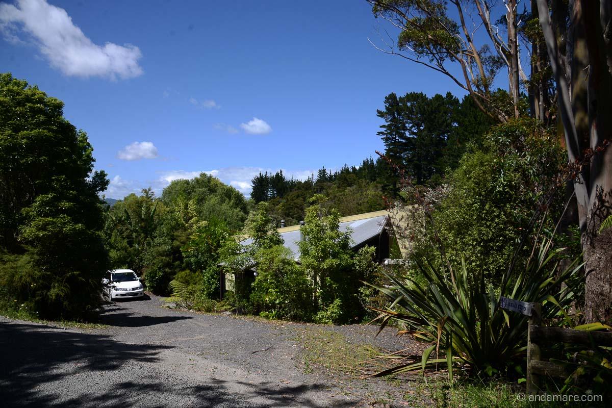 Coromandel_IndigoBushStudios-NZ_DSC_8602_01423_2013