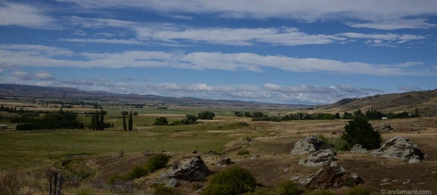 Ran into 2014 on Central Otago's Rail Trail near Ophir