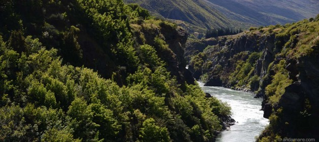 Gibbston Valley: Start at AJ Hackett Bungee and run (return)