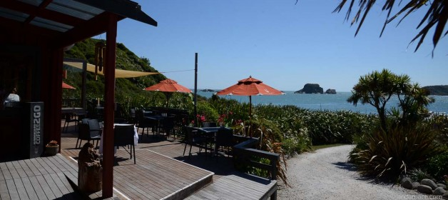 Eating out in Westport and Tauranga Bay
